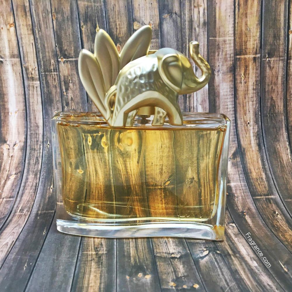 Fragrance ReviewEau L'elephant Kenzo Official Jungle The Talk n0P8wXkO