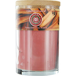 CINNAMON STICK by Terra Essential Scents SOY CANDLE 12 OZ TUMBLER. A SOOTHING, SPICY BLEND OF CINNAMON & SPICE OILS. BURNS APPROX. 30+ HOURS for UNISEX